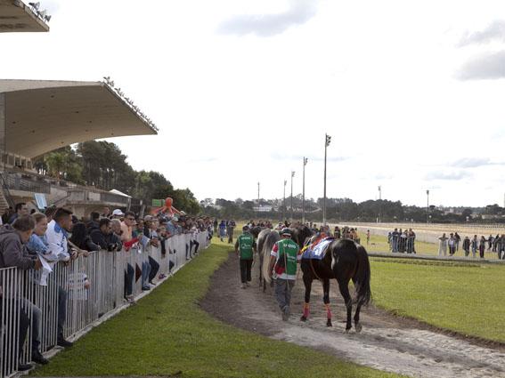 Jockey Club do Paraná, 515º reunião em 01/05/2017 Hipódromo do Tarumã