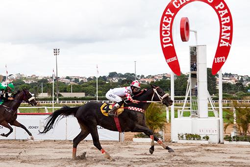 Corridas do Jockey Club do Paraná, 21 de dezembro de 2017
